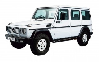 Buying Guide Mercedes-Benz G-Wagen W460/461 and W463