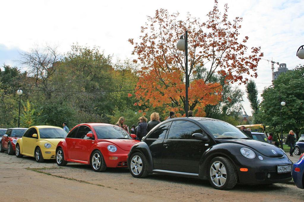 Сравнение подержанных VW Beetle и Mini