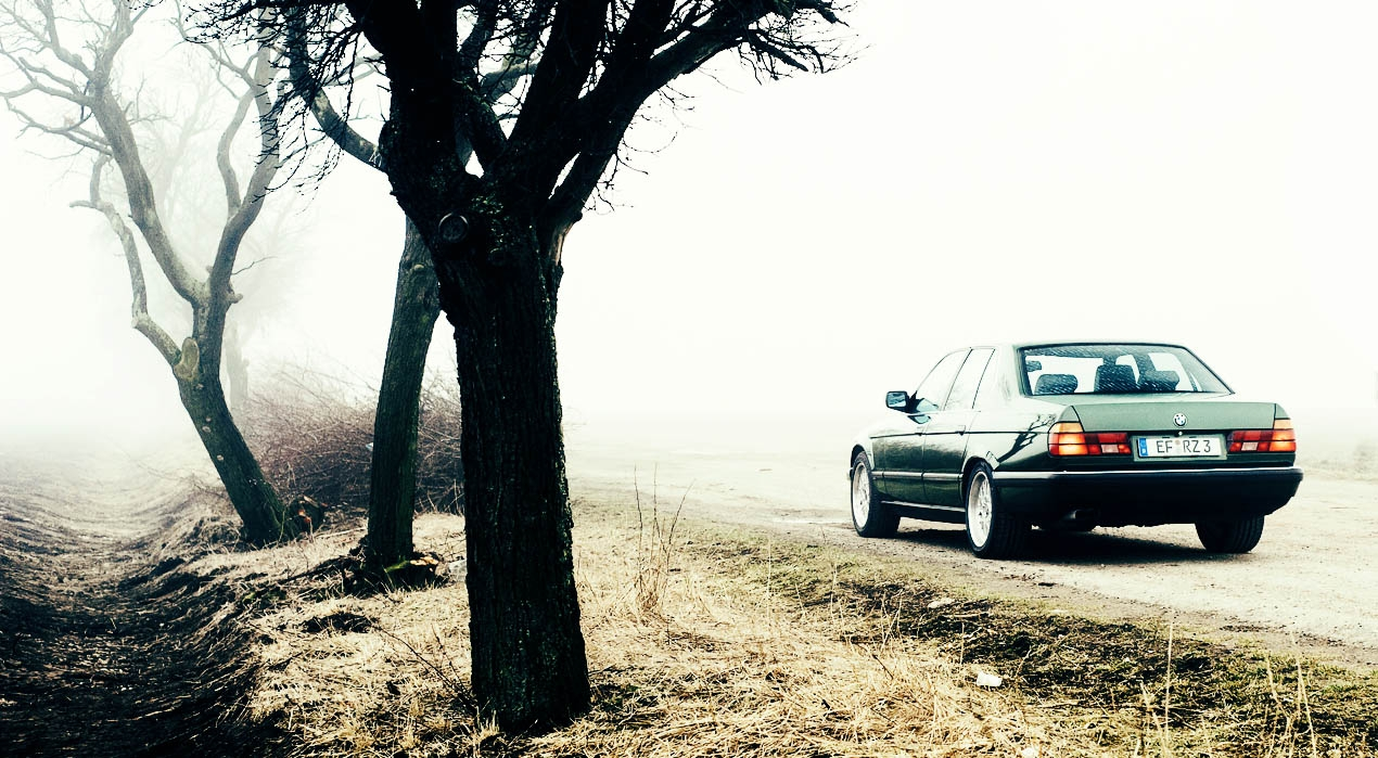 2015 / 2016 Drive-My
