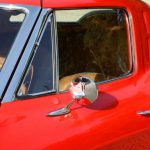1963-Corvette-Sting-Ray-injection-18